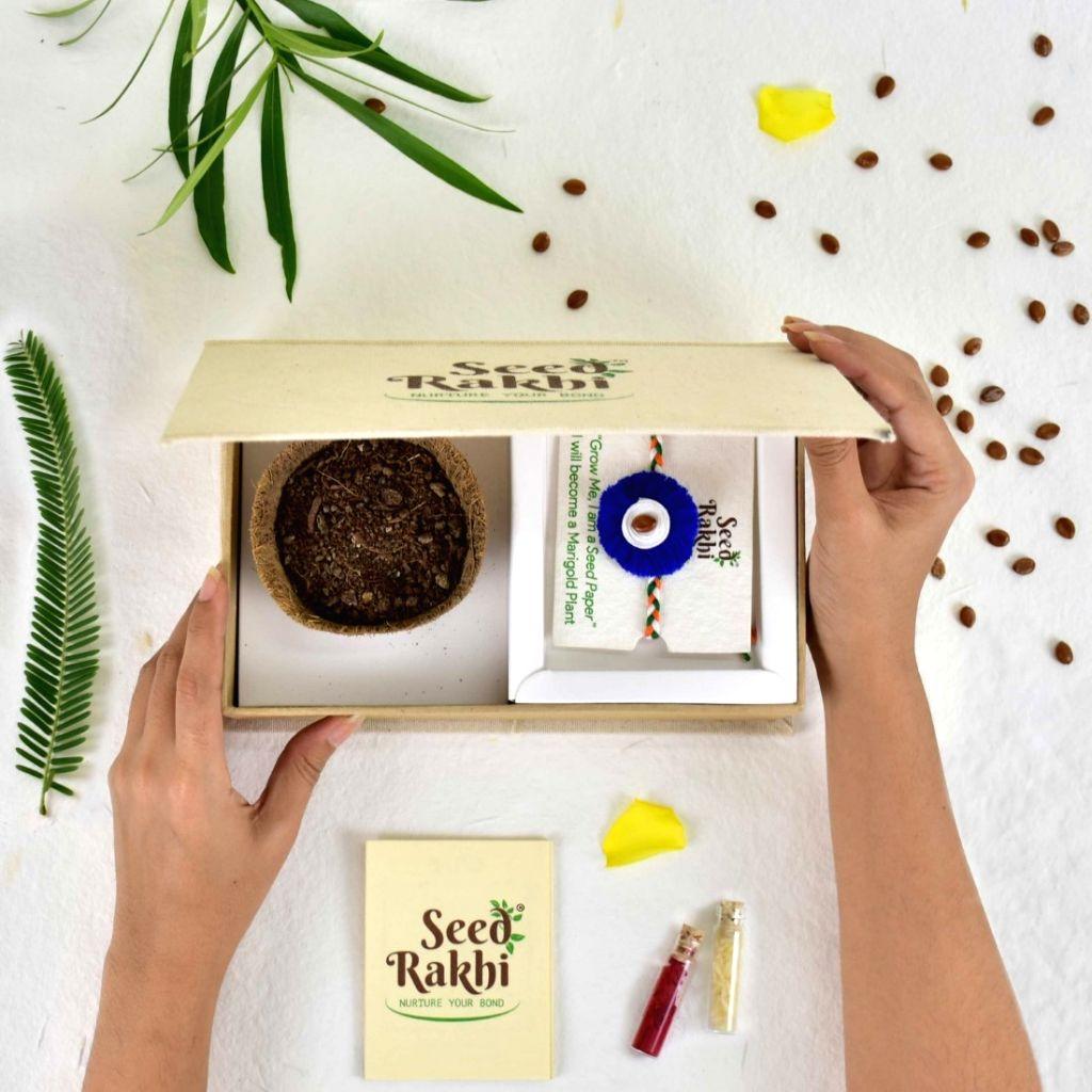 Seed rakhi box.