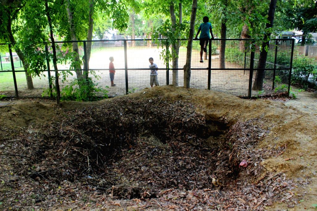 Seven-year-old Aryan and his friends play cricket near a large uncovered compost pit in a South Municipal Corporation of Delhi (SDMC) controlled park. On Tuesday, an 11-year-old boy had ...