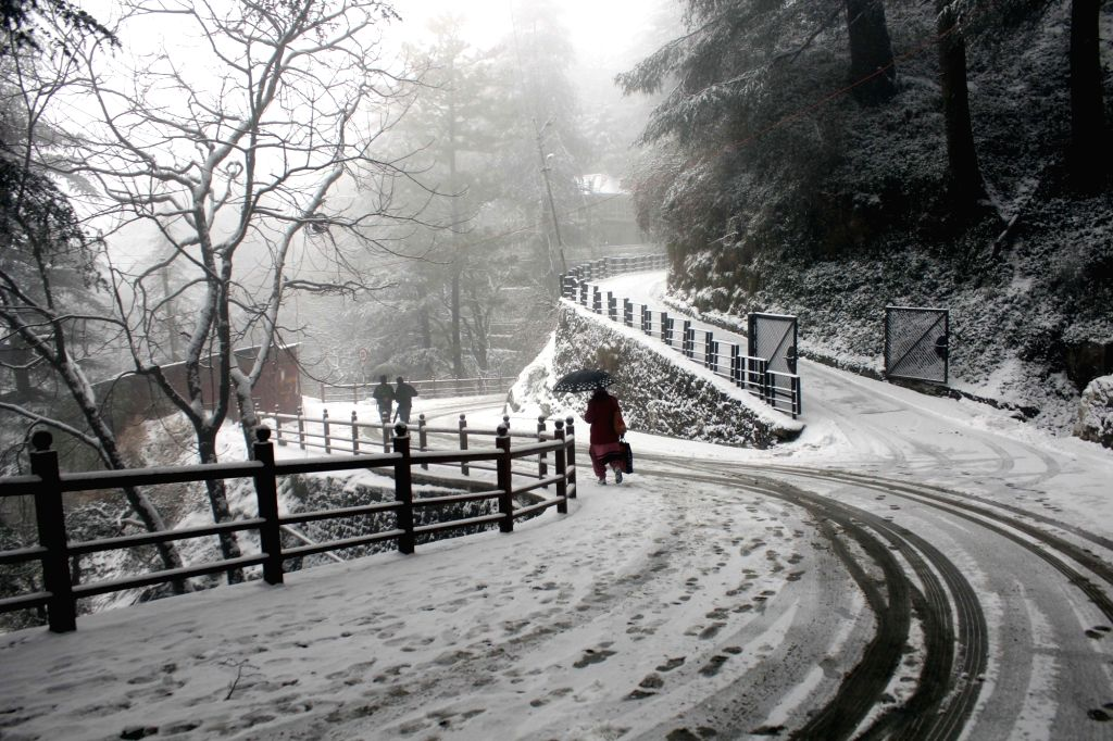 Shimla: A lady walks on snow covered roads of Shimla on Feb 27, 2019. (Photo: IANS)