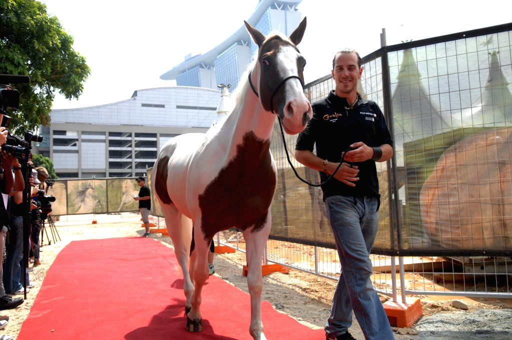 """A man takes a horse of the show """"Cavalia"""" to meet media for the first time in Singapore, Aug. 4, 2014.  """"Cavalia"""" is to be shown on Aug. 12  in"""