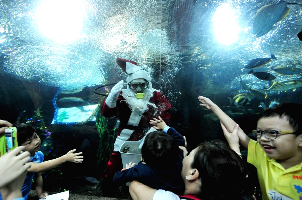 A diver dressed as Santa Claus interacts with children and volunteers from the Society for the Physically Disabled in Underwater World Singapore, Singapore, ..