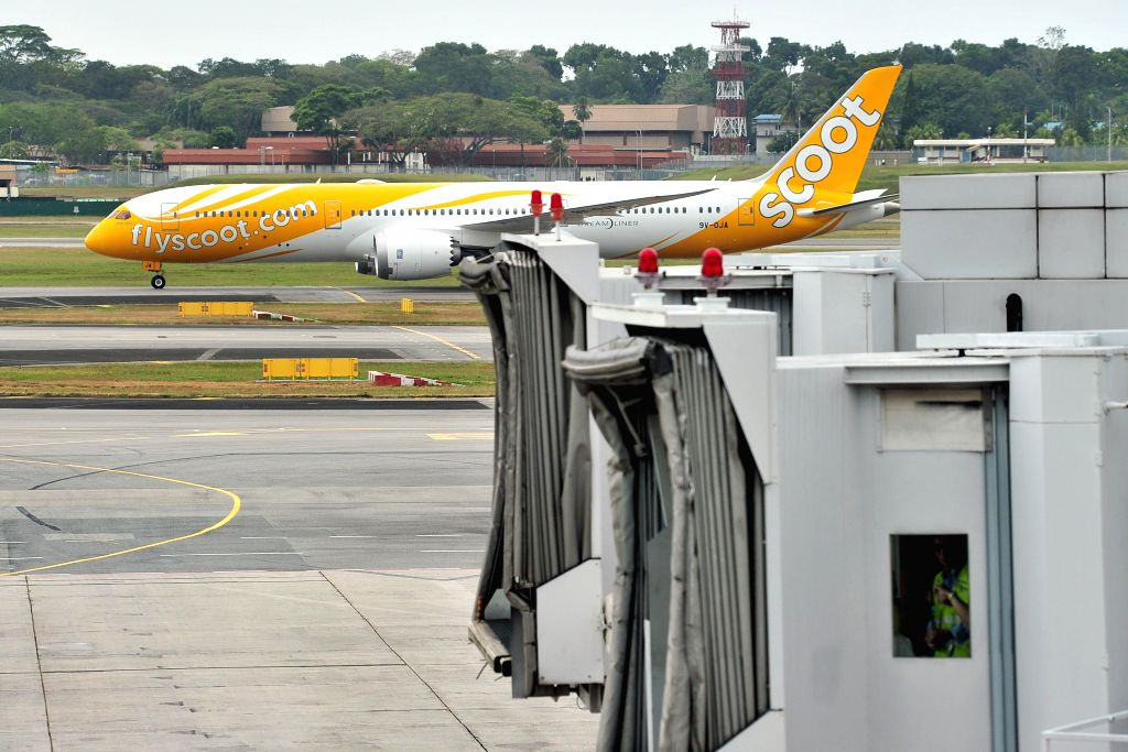 """Photo taken on Feb. 2, 2015 shows Singapore's Scoot """"Dream Start"""" Boeing B787 Dreamliner arriving at Terminal 1 of Singapore Changi Airport. Today, Scoot"""