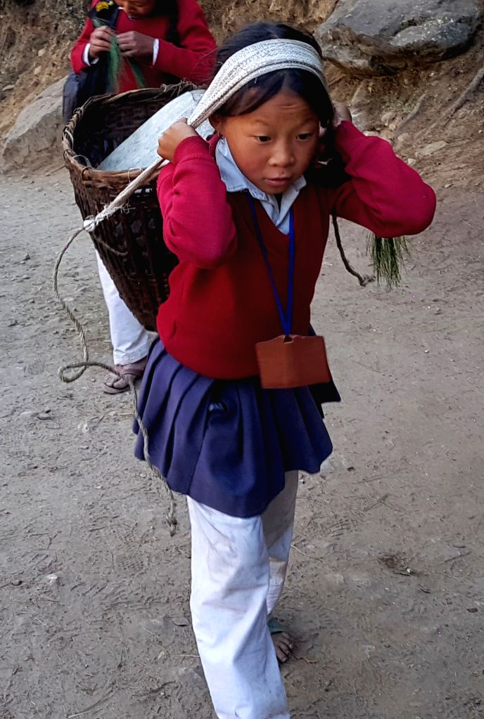 SOLUKHUMBU, Nov. 27, 2016 - A local child carrying books and household materials goes back home at a village of Phakding, Khumbu region in Solukhumbu, Nepal, Nov. 25, 2016. Children's education in ...