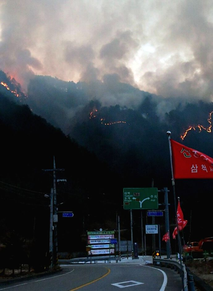 South Korea: A brush fire engulfs a mountain in the city of Samcheok on South Korea's eastern coast on Feb. 13, 2018, in this photo released by the Samcheok municipality. Firefighters have failed to ...
