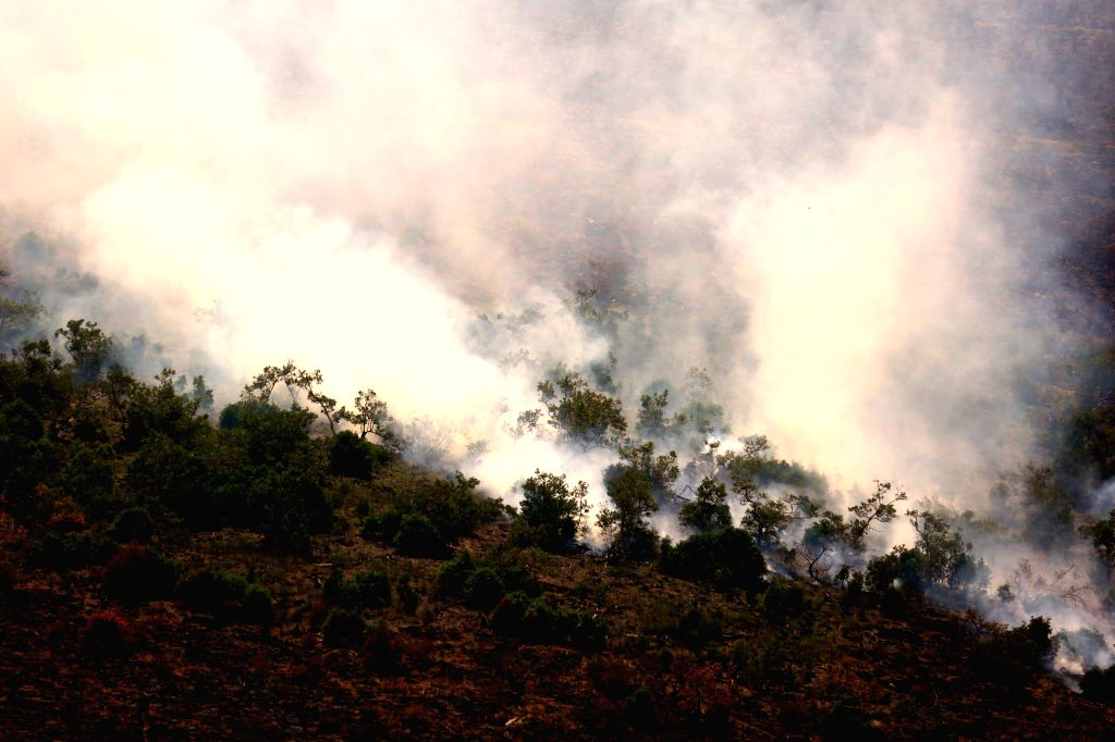 SOUTH SUMATERA, July 19, 2018 - A forest fire is seen in Ogan Komering Ilir, South Sumatra, Indonesia, on July 19, 2018.