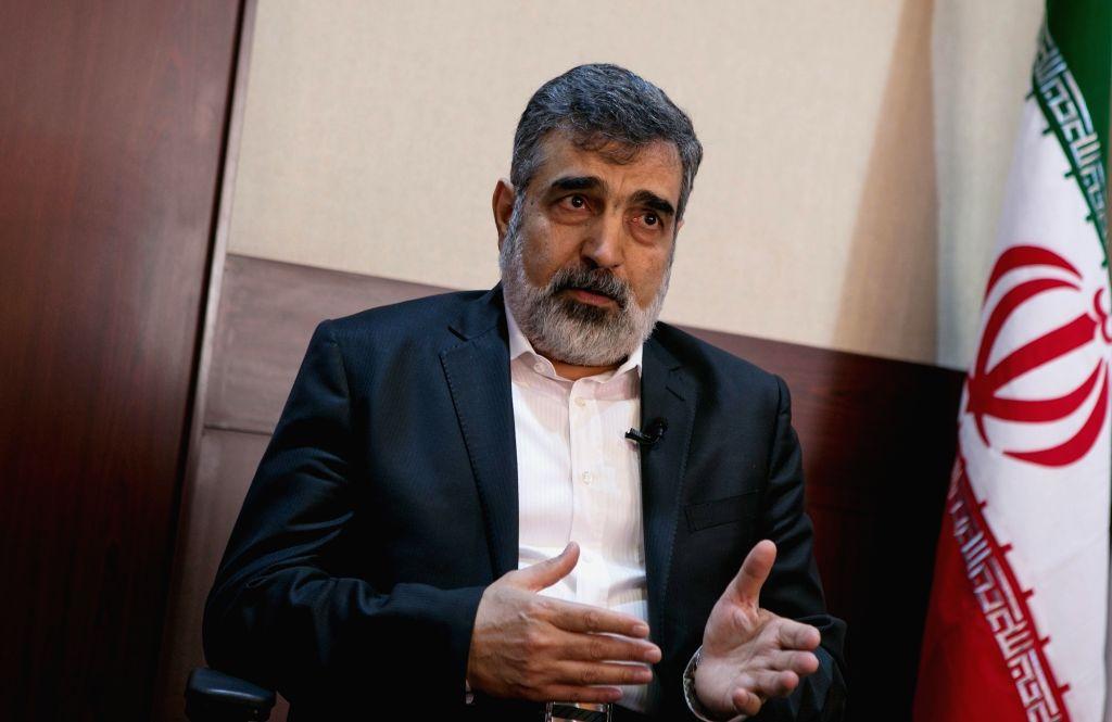 Spokesman for the Atomic Energy Organization of Iran Behrouz Kamalvandi . (File Photo: Xinhua/Ahmad Halabisaz/IANS)