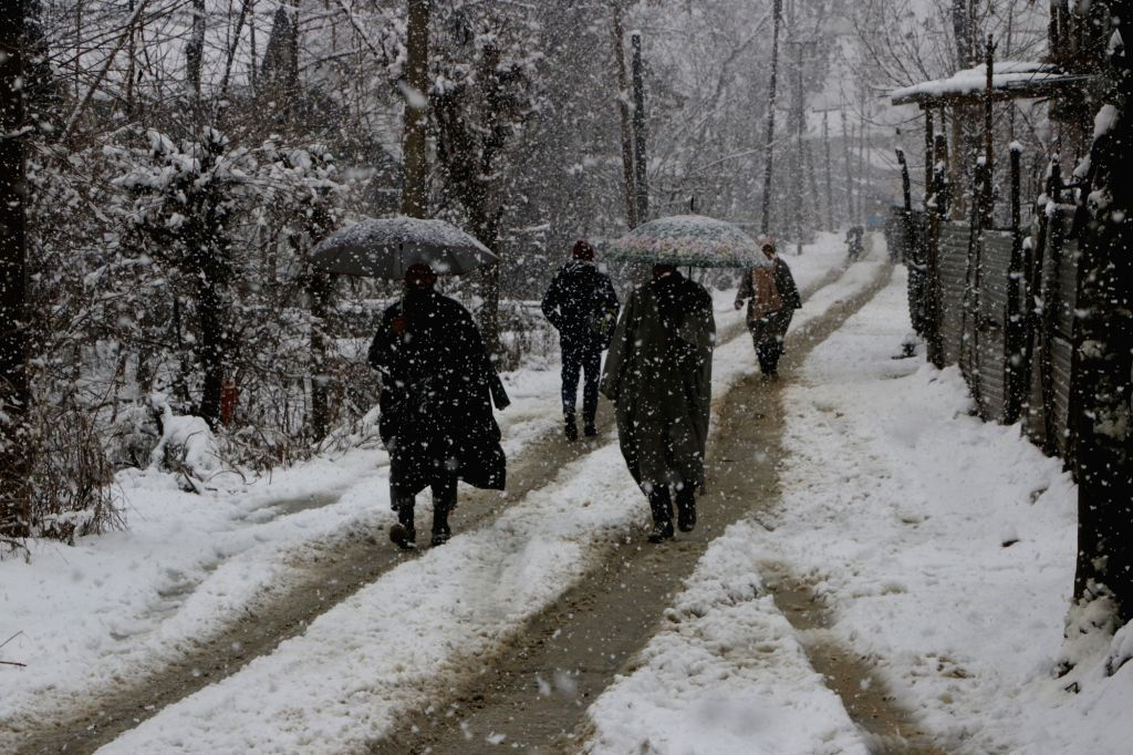 Srinagar: People shield themselves with umbrellas during heavy snowfall in Srinagar, on Feb 7, 2019. (Photo: IANS)