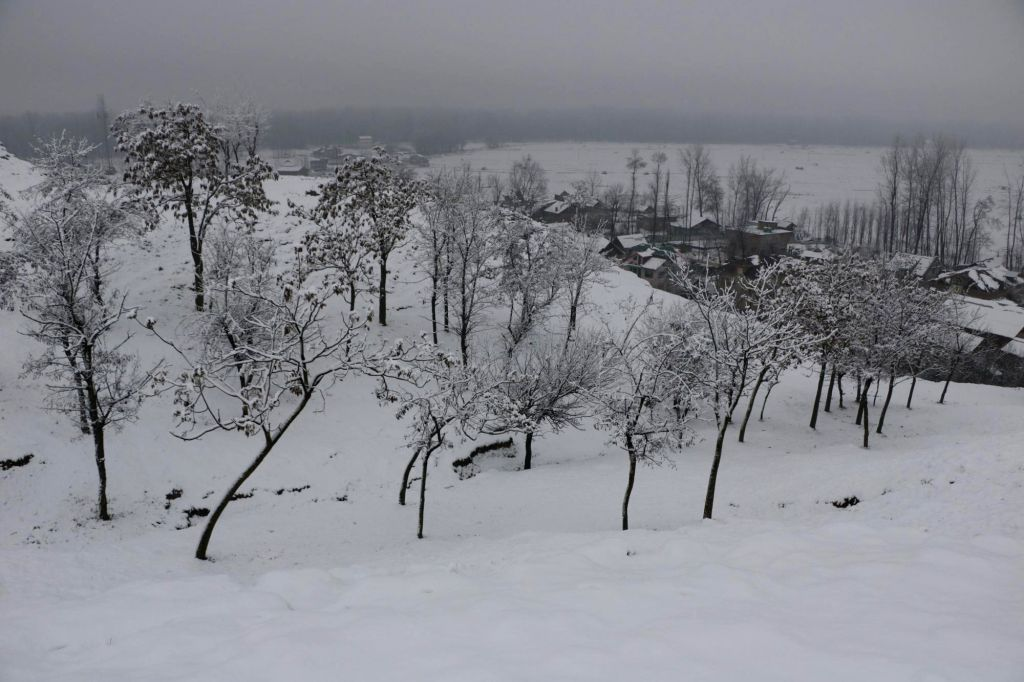 Srinagar receives heavy snowfall on Feb 1, 2019. (Photo: IANS)