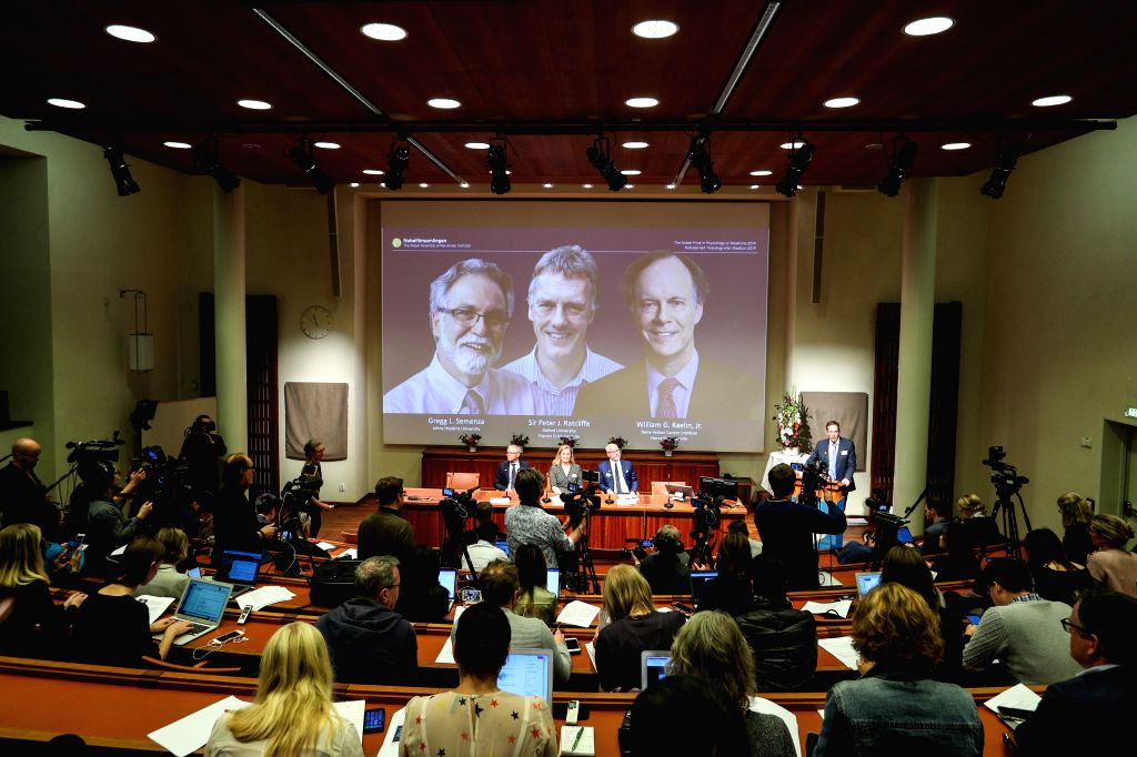 STOCKHOLM, Oct. 7, 2019 - Photo taken on Oct. 7, 2019 shows the announcement of the 2019 Nobel Prize in Physiology or Medicine at the Karolinska Institute in Stockholm, Sweden, Oct. 7, 2019. The ...