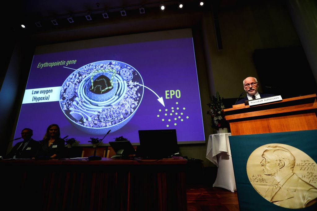 STOCKHOLM, Oct. 7, 2019 (Xinhua) -- Photo taken on Oct. 7, 2019 shows the announcement of the 2019 Nobel Prize in Physiology or Medicine at the Karolinska Institute in Stockholm, Sweden, Oct. 7, 2019. The prize was awarded jointly to William G. Kaeli