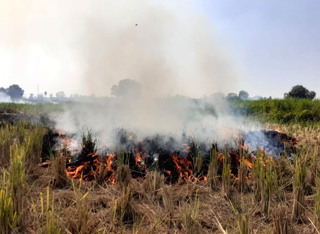 Stubble set on fire at an agricultural field on the outskirts of New Delhi on Oct 16, 2019. The Arvind Kejriwal-led Aam Aadmi Party government has been blaming the severe air pollution in ... - The Arvind Kejriwal