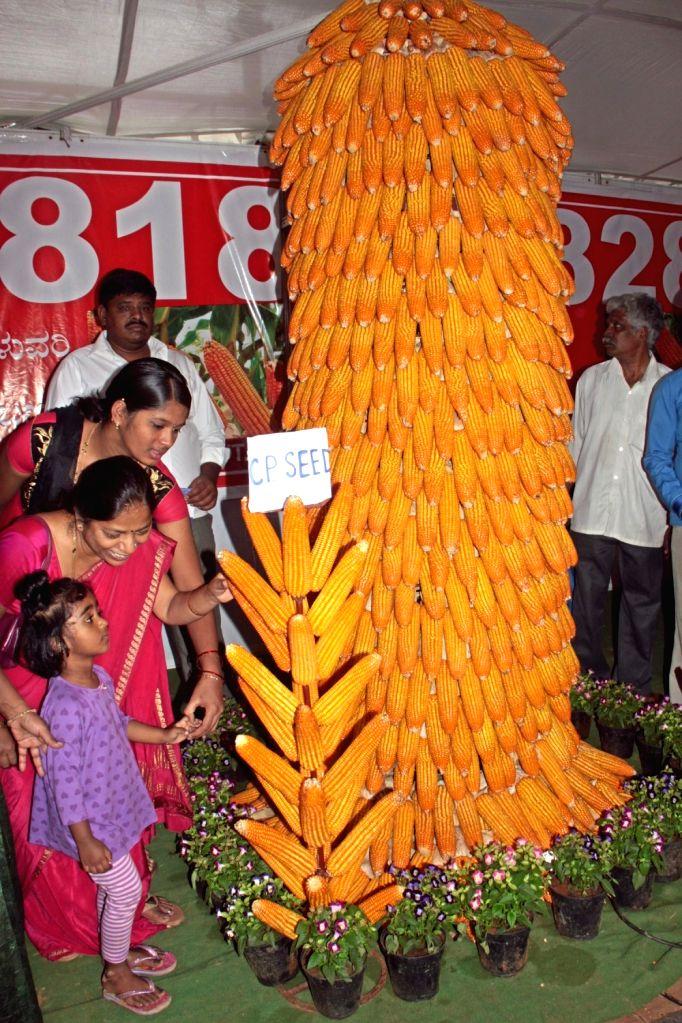 Student at Krishi Mela 2015 organised by University of Agricultural Sciences at Gandhi Krishi Vignayana Kendra (GKVK campus) in Bengaluru, on Nov 19, 2015.