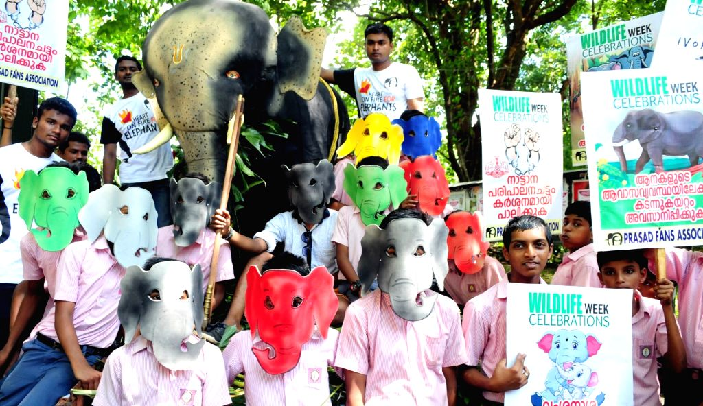 "Students take out a ""Save Elephants' rally to mark the Wildlife Week in Kannur on Oct 4, 2016."