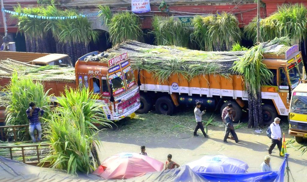 Sugarcanes arrive at a wholesale market ahead of Makar Sankranti in Bengaluru, on Jan 12, 2019.