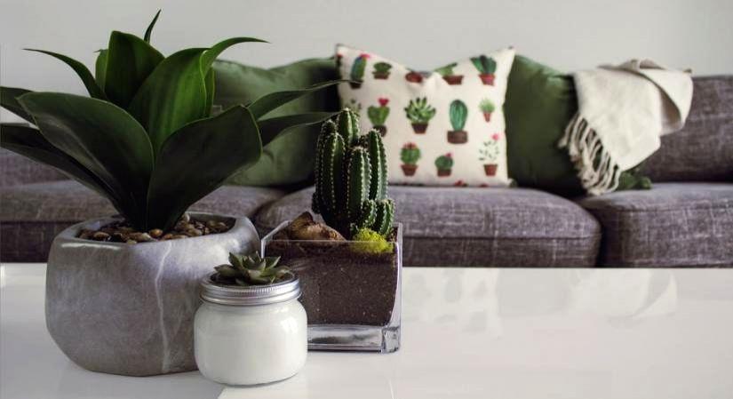 Summer-ize your home decor.(photo:IANSLIFE)