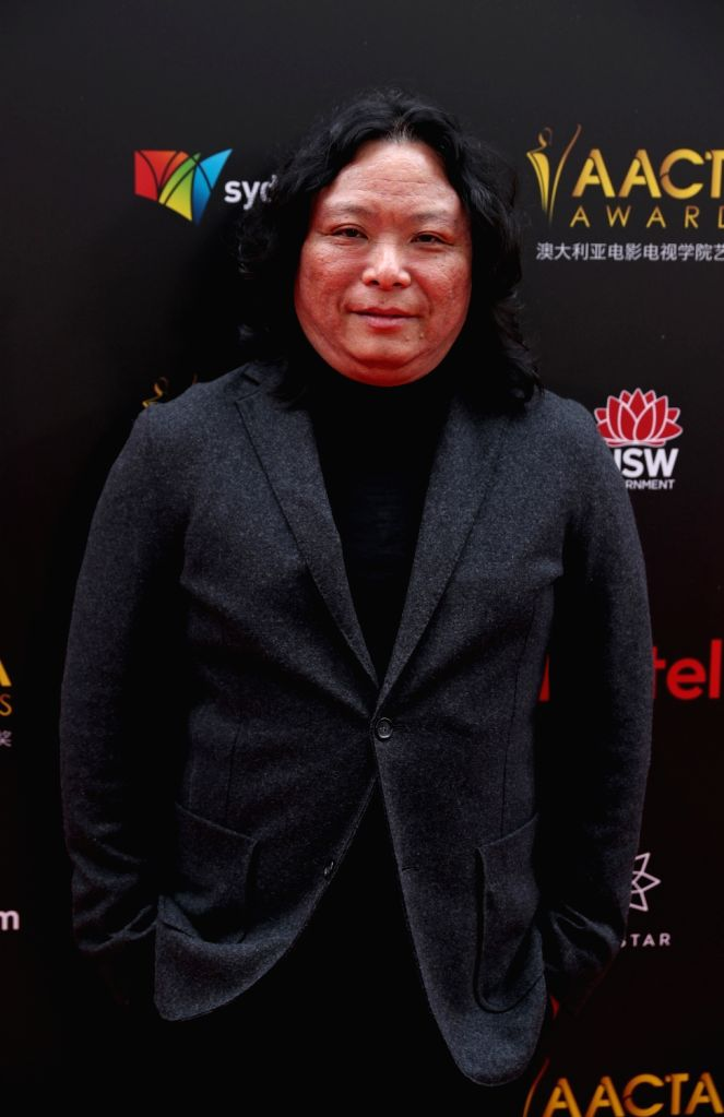 SYDNEY, Dec. 5, 2018 - Chinese screenwriter Liu Yi poses for photos on the red carpet of the AACTA awarding ceremony in Sydney, Australia, on Dec. 5, 2018. The 8th awards ceremony of AACTA was held ...