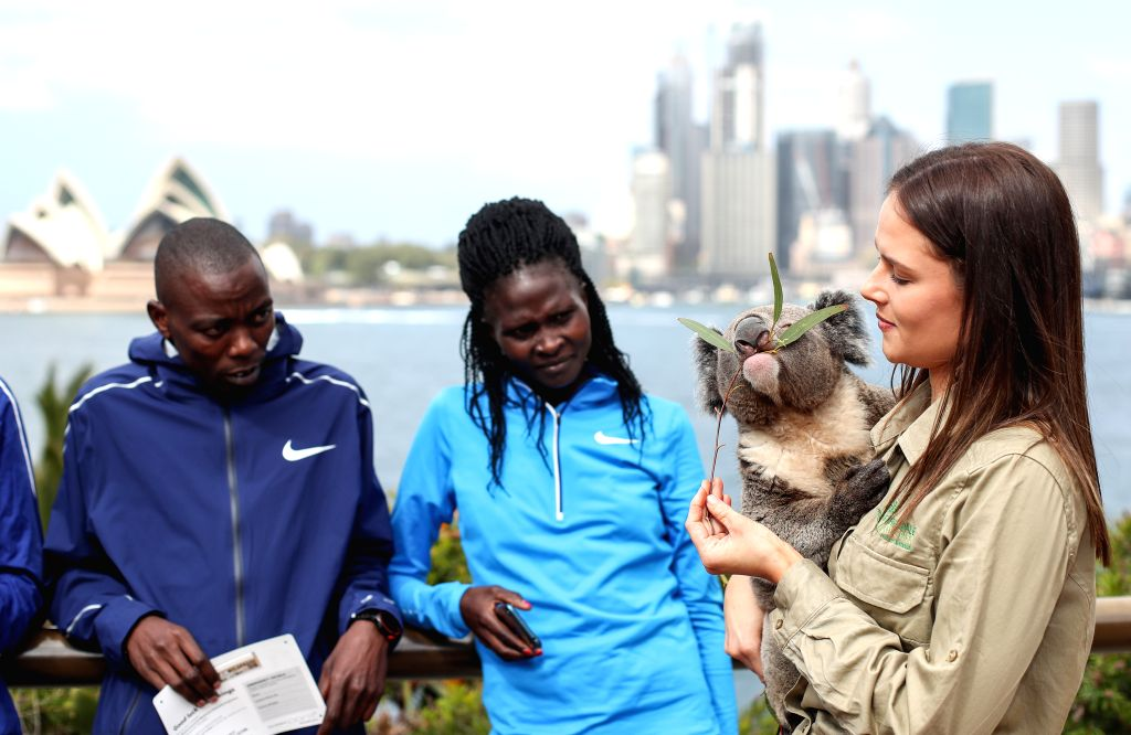 SYDNEY, Sept. 13, 2019 - Athletes gather around a Koala ahead of Sydney Running Festival in Sydney, Australia, Sept. 13, 2019. Sydney Running Festival will be held on Sunday.
