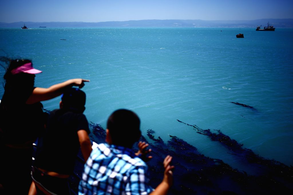 People watch the water of the Bay of Concepcion, in Talcahuano, in the Biobio region, Chile, on Jan. 12, 2015. According to local press, the waters of the Bay of