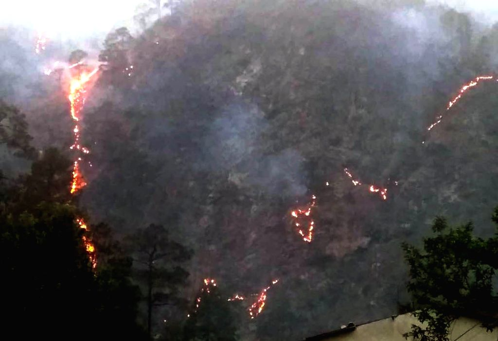 Tehri Garhwal: Fire breaks out in the forests of Tehri Garhwal district in Uttarakhand, on May 11, 2019.