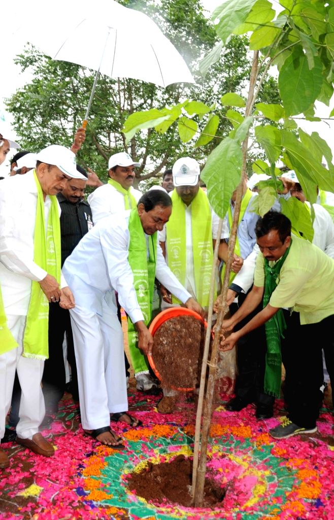 Telangana Chief Minister K Chandrasekhar Rao  plants a tree during 'Haritha Haram' programme in Hyderabad, on July 11, 2016. - K Chandrasekhar Rao