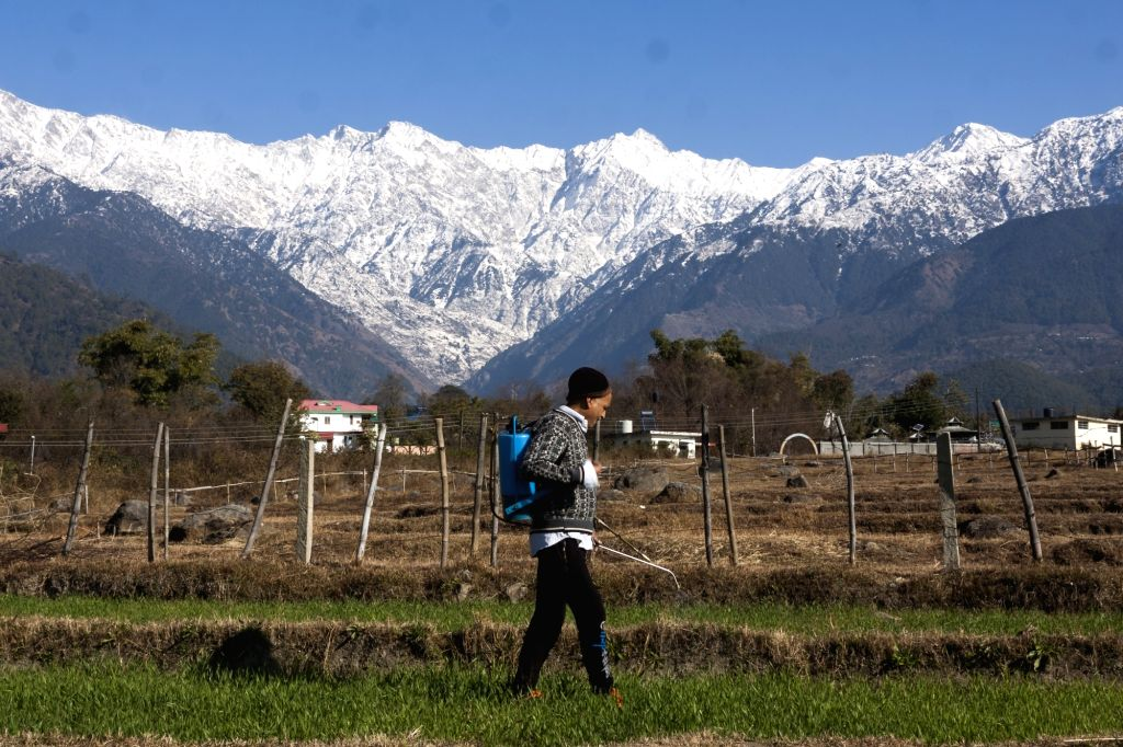 Temperatures below freezing point in Himachal. (Photo: IANS)