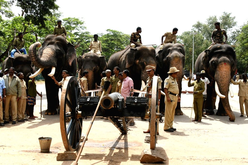 The customary cannon firing ritual underway in the presence of Dasara elephants ahead of Dasara festivities in Bengaluru on Sep 13, 2019.