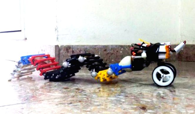 The first single actuator wave-like robot (SAW) can swim, crawl and climb using a single, small motor. Photo: American Associates, Ben-Gurion University of the Negev.