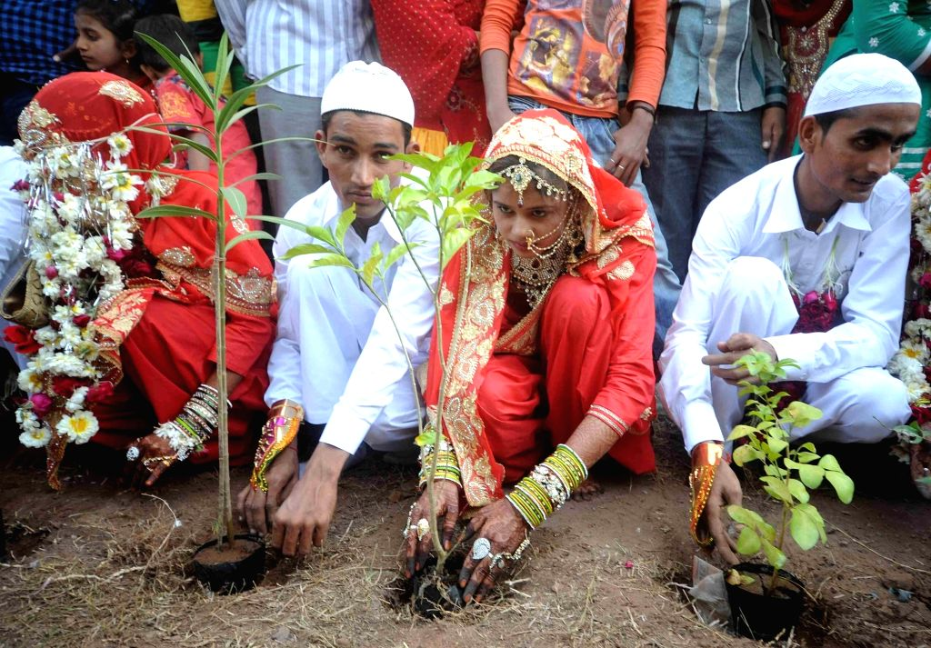 The newlywed couples plant saplings during a mass marriage organised by the Hussaini Vaqf Committee in Ahmedabad on Jan 22, 2016.