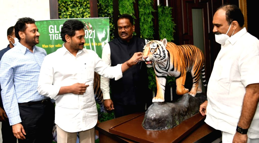Tiger numbers rise from 47 to 63 in 1 year in Andhra Pradesh