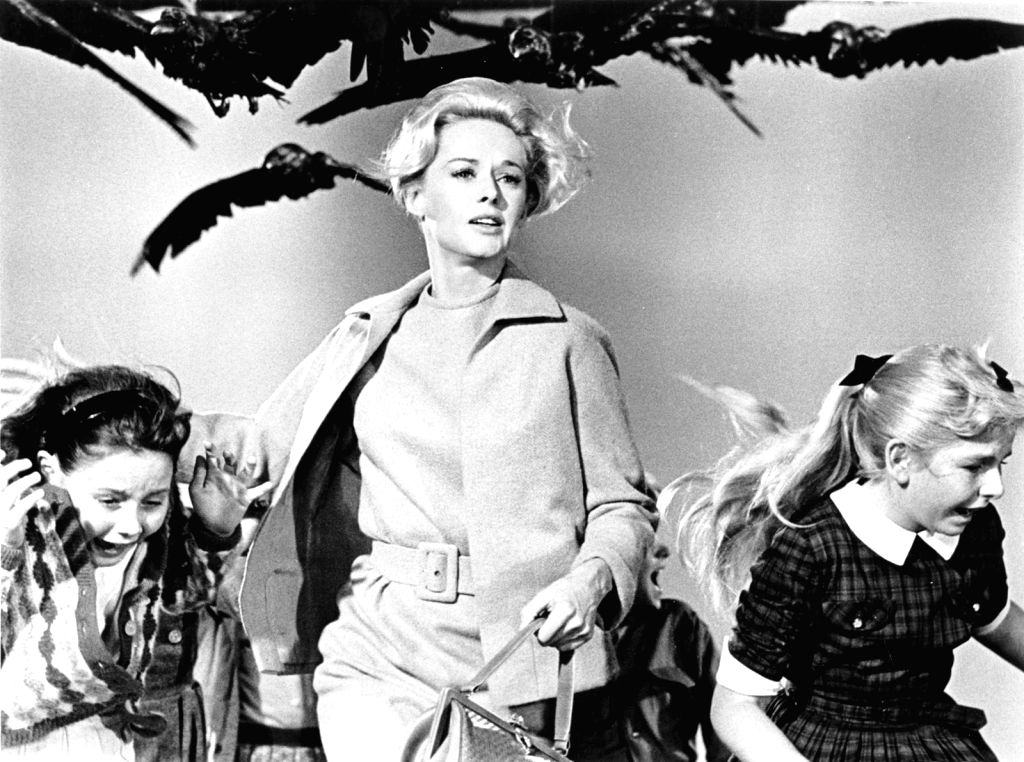 "Tippi Hendren in an iconic scene from Alfred Hitchcock\'s ""Birds\"""