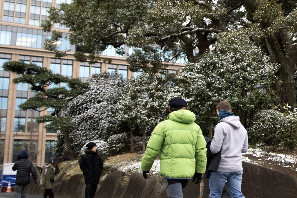 TOKYO, Feb. 9, 2019 - Trees are covered by snow in Tokyo, Japan, Feb. 9, 2019.