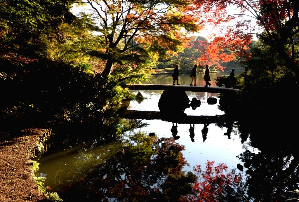 Tokyo (Japan): Visitors view red leaves in late autumn at a park in Tokyo, Japan, Nov. 27, 2014.