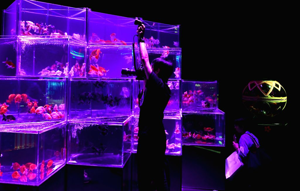 TOKYO, July 5, 2018 - A visitor takes pictures of installations with goldfish in illuminated tanks at Art Aquarium exhibition in Tokyo, Japan, July 5, 2018.