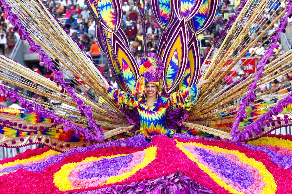 A dressed up competitor perfroms with her float during the King and Queen Competition and Show of the 47th Toronto Caribbean Carnival in Toronto, Canada, July 31, ...