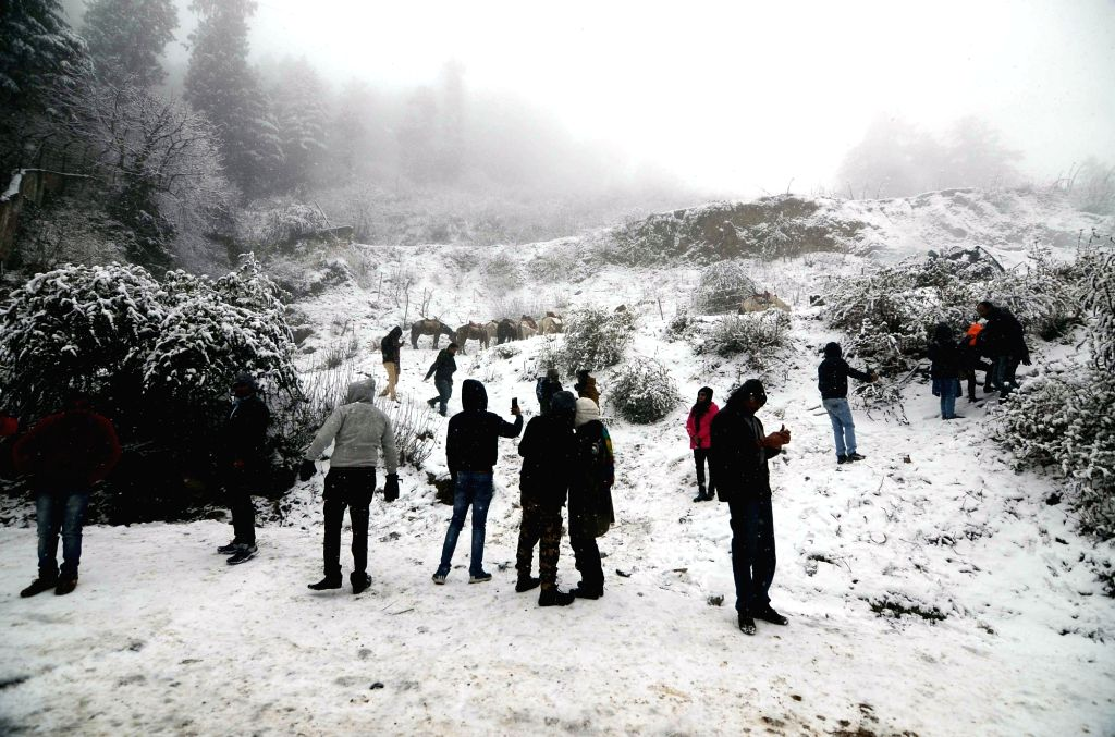 Tourists enjoy themselves during fresh snowfall at Kufri in Shimla, on Dec 12, 2019.