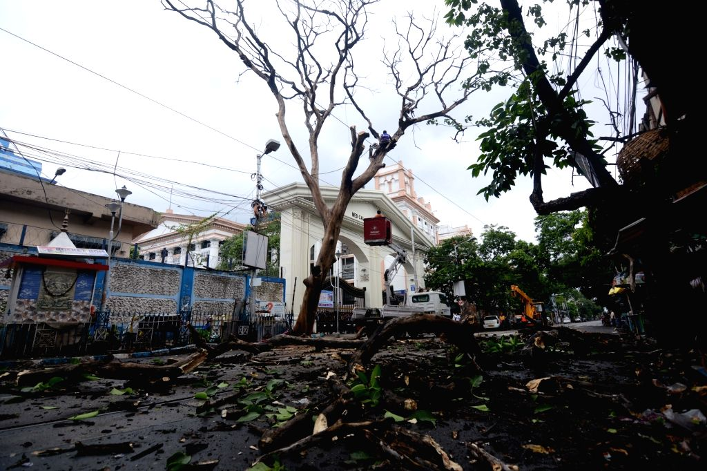 """Trees have collapsed due to the effect of storm cyclone """"Yash"""" in Kolkata on May 26, 2021"""