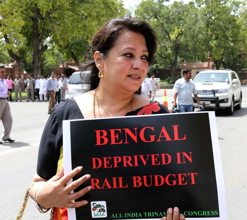 Trinamool Congress MP from Bankura Moon Moon Sen holds a placard to protest against Rail budget 2014-15 in the Parliament premises in New Delhi on July 9, 2014.