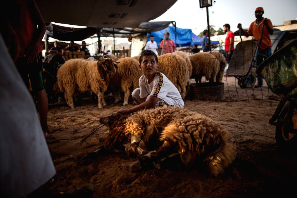 TRIPOLI, Aug. 9, 2019 - A boy holds a sheep at a livestock market in Tripoli, Libya, on Aug. 9, 2019. Libya's National Animal Health Center on Friday said that 350,000 sheep have been imported for ...