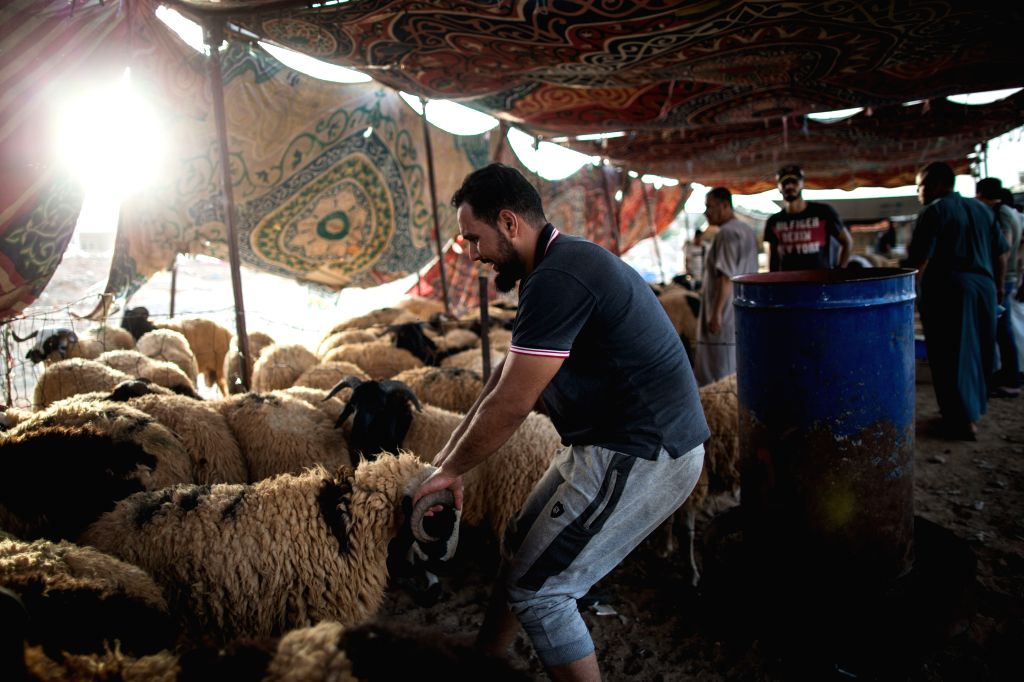TRIPOLI, Aug. 9, 2019 - A man drags a sheep at a livestock market in Tripoli, Libya, on Aug. 9, 2019. Libya's National Animal Health Center on Friday said that 350,000 sheep have been imported for ...