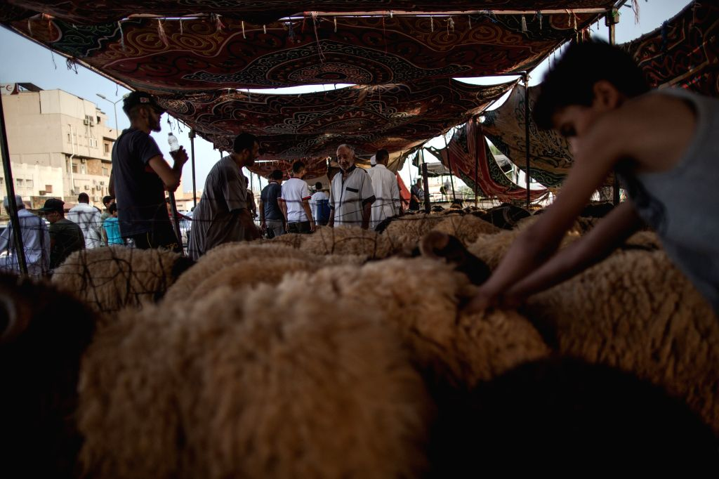 TRIPOLI, Aug. 9, 2019 - People buy sheep at a livestock market in Tripoli, Libya, on Aug. 9, 2019. Libya's National Animal Health Center on Friday said that 350,000 sheep have been imported for Eid ...