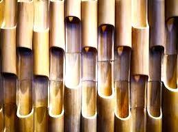 Tripura Bamboo