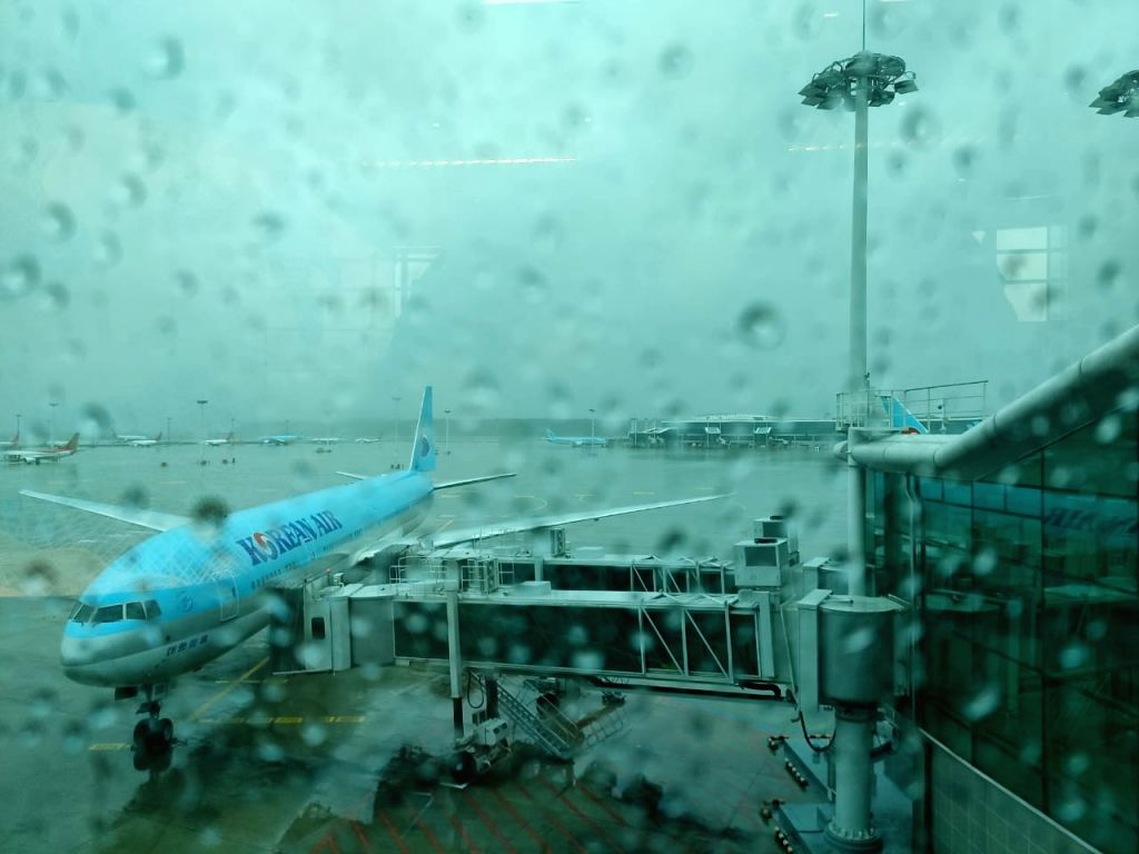Typhoon Lingling on Saturday delayed the return home of Defence Minister Rajnath Singh, who was on a four-day visit to South Korea, as the Seoul Airport remained inoperable for several hours, ... - Rajnath Singh
