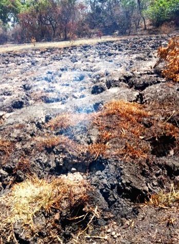 Underground fires in the forest ranges of Lakhimpur Kheri district in Uttar Pradesh have triggered panic among the local villagers who have started fleeing their homes as smoke has been ...