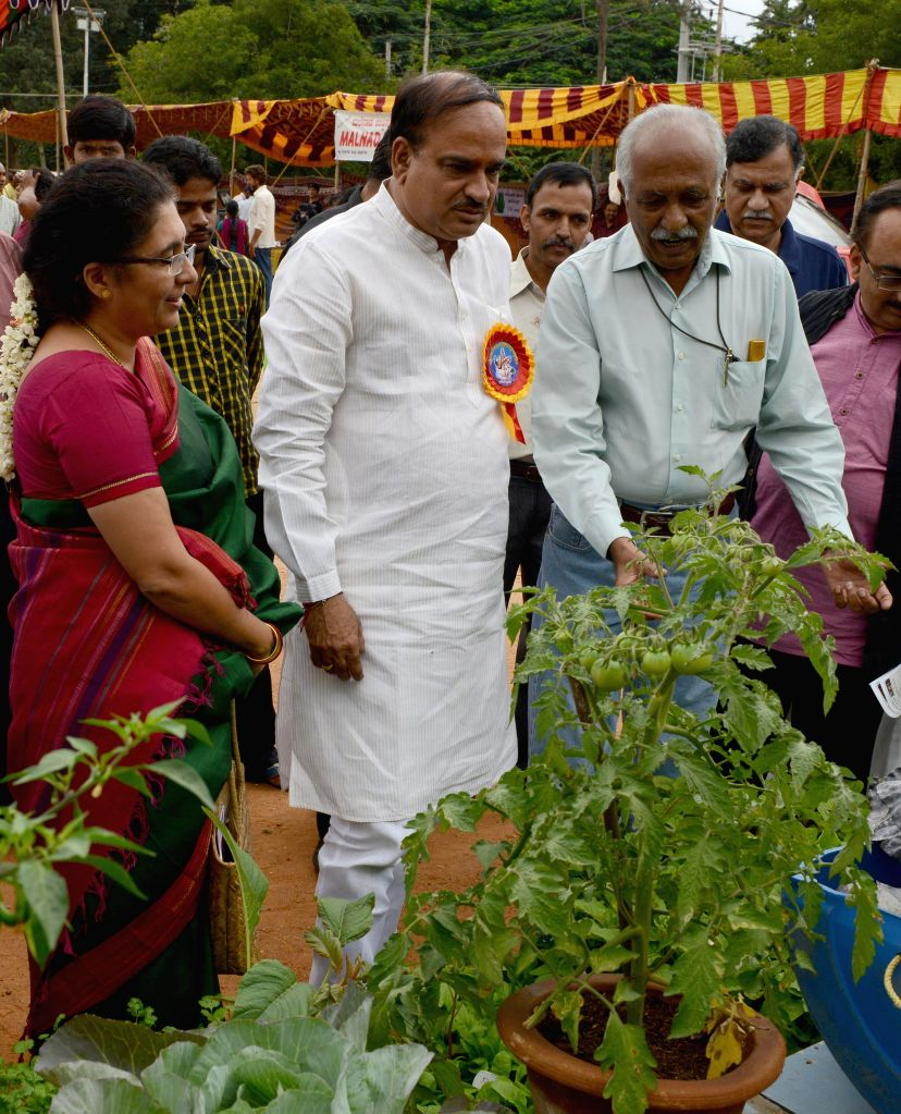 Union Chemicals and Fertilizer Minister Ananth Kumar during `Oota from Your Thota` (Dinner from Your Garden) at JP Nagar in Bangalore on Aug 31, 2014. - Ananth Kumar