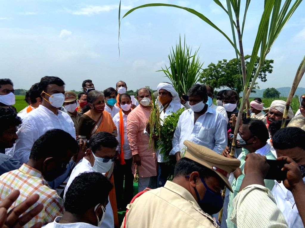 Union finance minister takes feedback on farm laws from Andhra farmers at roadside paddy field - AP