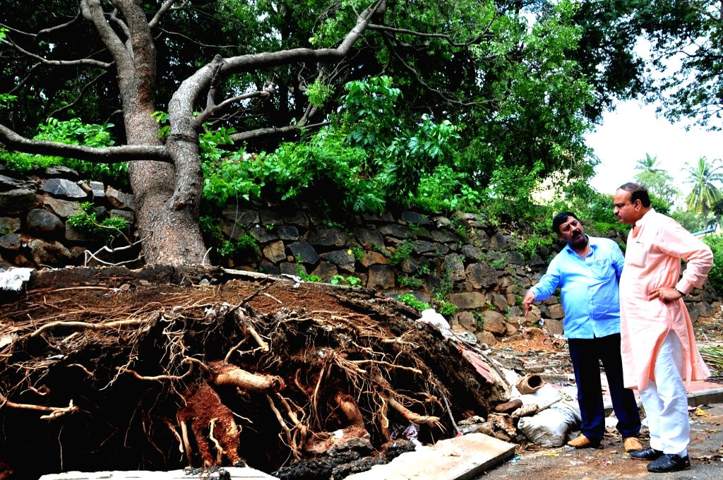 Union Minister Anant Kumar inspects as heavy rains uprooted trees in Bengaluru on Sept 10, 2017. - Anant Kumar