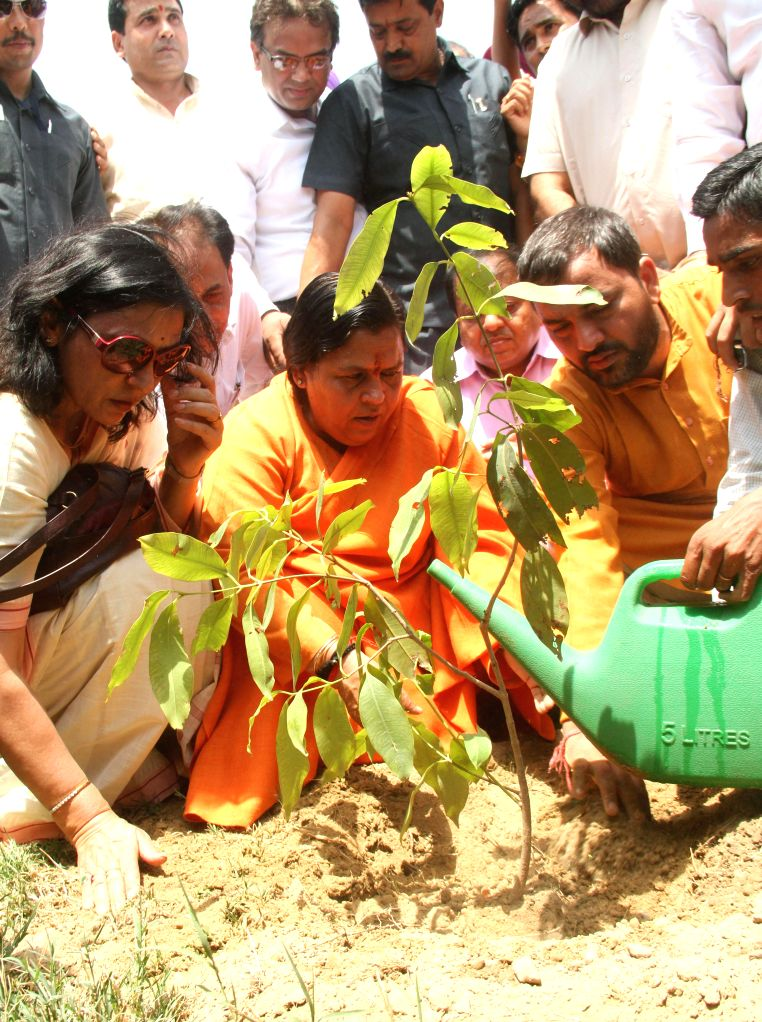 Union Water Resources Minister Uma Bharti to plant saplings in the memory of Kedarnath tragedy victims at Chath Ghat, Yamuna River, ITO Bridge in New Delhi on June 17, 2014.