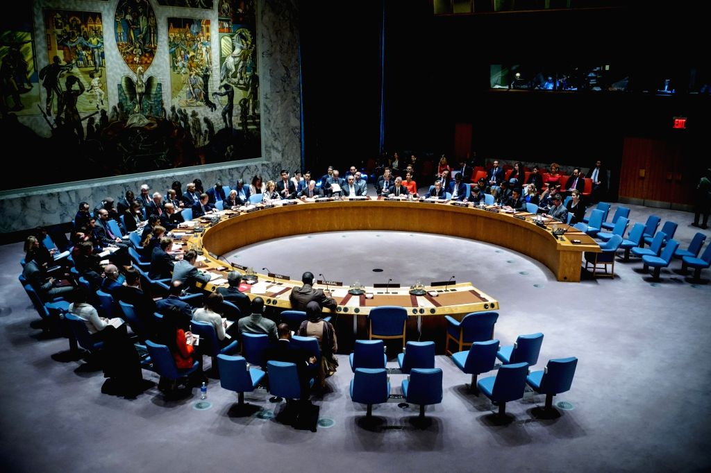 UNSC unanimously adopts resolution on peacekeepers' safety, security