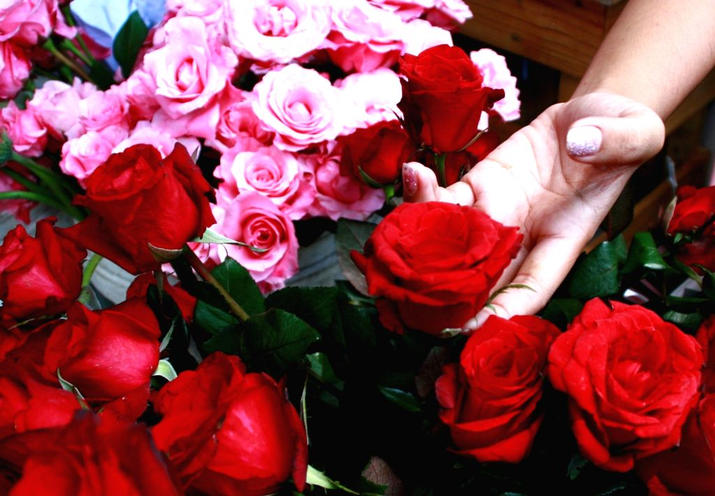 Valentine's Day. (File Photo: IANS)