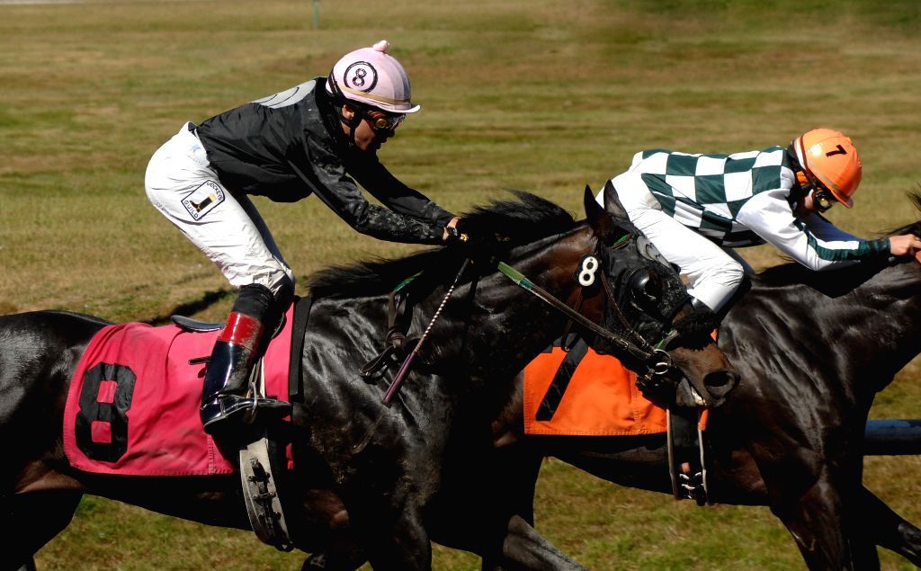 Jockeys Alexander Marti on Stoneridge Cat (L) and Corrine Andros on Rock It Star compete in the 2014 BC Cup horse racing at Hastings Park racecourse in Vancouver, .